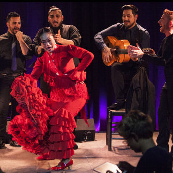 show-flamenco-barcelona-night-03